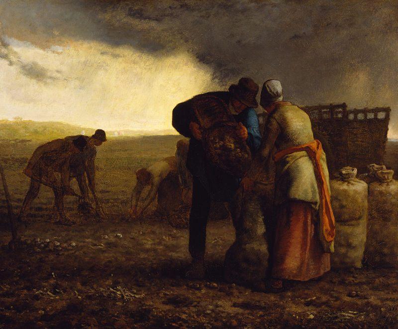 Contoh karya aliran realisme: The Potato Harvest oleh Jean-Francois Millet, gambar asli diperoleh melalui: wikipedia.com