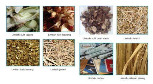 Contoh Limbah Lunak Organik