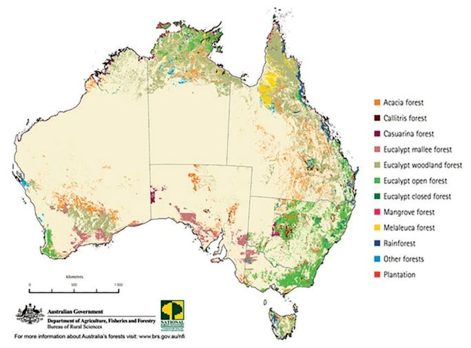 tanaman di australia
