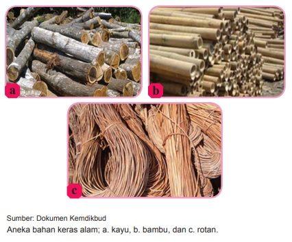 bahan kerajinan keras alam kayu bambu dan rotan