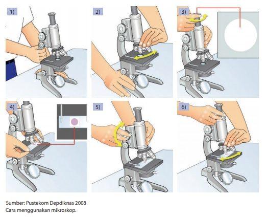 cara langkah-langkah menggunakan mikroskop